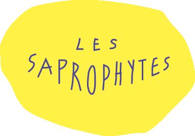 Saprohytes-petit_patate3-jaune
